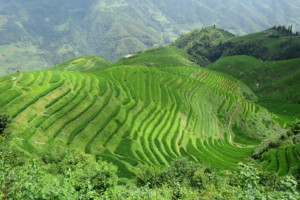 Longsheng i rijeka Li