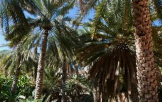 Misfah al Abreyeen, Oman